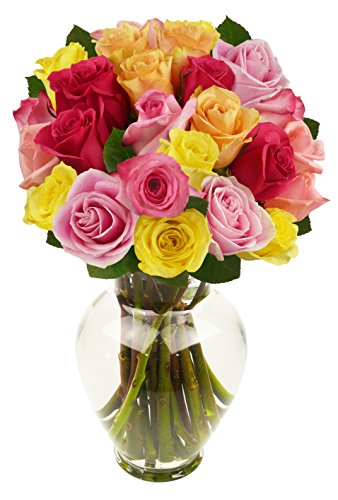 benchmark-bouquets-2-dozen-rainbow-roses-with-vase