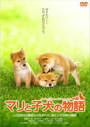 История Мари и трёх щенков
