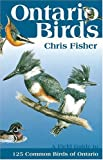 Ontario Birds (1551050692) by Fisher, Chris