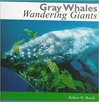 Gray Whales, Wandering Giants