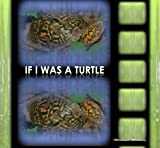 img - for If I Was a Turtle: Boys Version book / textbook / text book