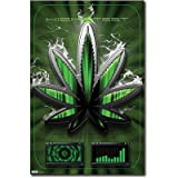 (24x36) Marijuana High Test, Pot Leaf Art Poster Print