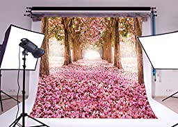 LB 10x10ft Cherry Blossoms Street Poly Fabric Customized Backdrop CP Photography Prop Photo Background 14-401