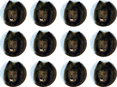 chow-chow-black-edible-cake-toppers-12-of-38mm-15inch-71