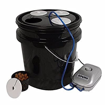 HTGSupply 5-Gallon Bubble Boy 4 Banger Deep Water Culture (DWC) Hydroponic Bucket System