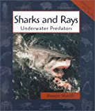 img - for Sharks and Rays: Underwater Predators (Animals in Order) book / textbook / text book