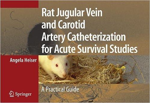 Rat Jugular Vein And Carotid