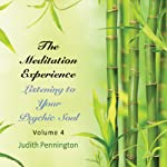 The Meditation Experience, Vol. 4 | Judith Pennington