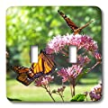 3dRose lsp_80328_2 3 Monarch Butterflies On Flowers Double Toggle Switch