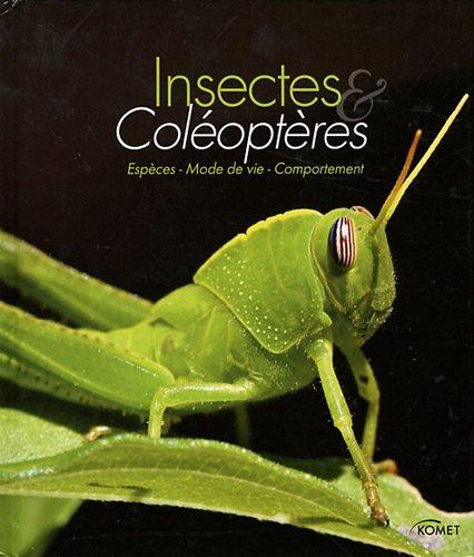 insectes-et-coleopteres-especes-mode-de-vie-comportement