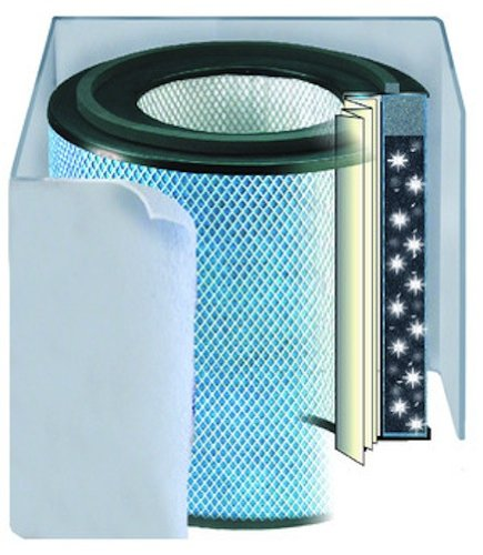 Austin Air Healthmate Plus JR Replacement Filter, Black