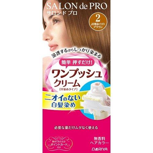 サロンドプロ ワンプッシュクリームヘアカラー 2