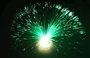 Liroyal Colour Changing Fibre Optic Fountain - Night light Calming Lamp by Liroyal
