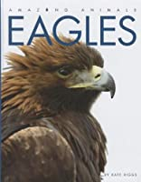 Eagles (Amazing Animals (Creative Education Hardcover))