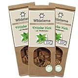 Wildsterne Frische Kick mit Pfefferminz Hundeleckerli, 3er Pack (3 x 100 g)