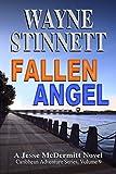 img - for Fallen Angel: A Jesse McDermitt Novel (Caribbean Adventure Series Book 9) book / textbook / text book