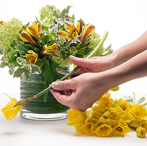 Flower Arrangements Basics: Bouquet Basics Arts Entertainment