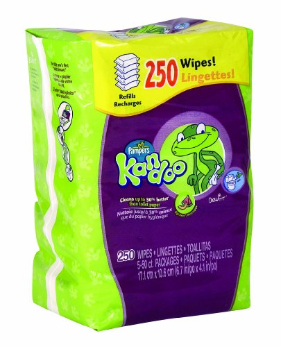 How to get Pampers Kandoo Flushable Toilet Wipes, Magic Melon, 250 Count Refills (Pack of 4) Guides