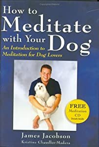 How to Meditate with Your Dog: An Introduction to Meditation for Dog Lovers by Maui Media