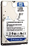 Item 6894: Western Digital Blue 1 TB WD10JPVT