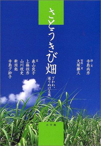 さとうきび畑―ざわわ、通りぬける風