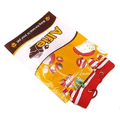 Alfie Pet Apparel - Torri Diaper Dog Sanitary Pantie 4-Piece Set (for Girl Dogs)