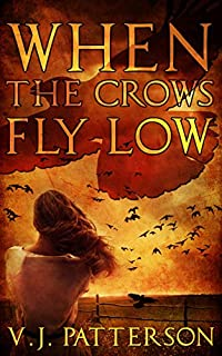 When The Crows Fly Low by V.J. Patterson ebook deal