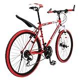 購入自転車 初走行