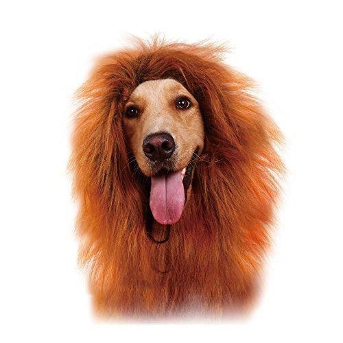 GABOS (Dog Halloween Costumes Lion)