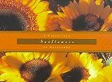 Sunflowers: Notecards (0006491839) by Kleinman, Kathryn
