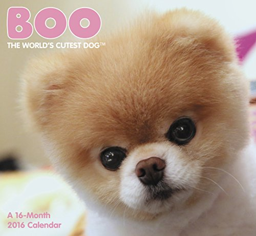 Boo Mini Wall Calendar (2016) PDF