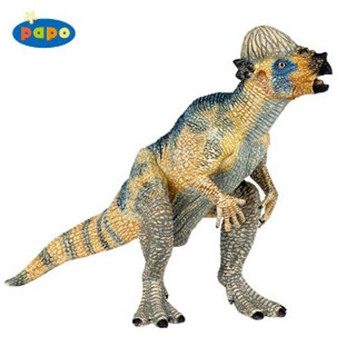 Baby Pachycephalosaurus (パキケファロサウロス)