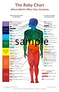 """The Roby Chart: Where Beliefs Affect Your Anatomy (White Background 11x17"""")"""