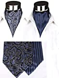 Mens Luxury 100% Silk Cravat Self Tie Woven Ascot Printed with Gift Box