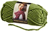 Lion Brand Yarn Company 1-Piece Hometown USA Yarn, Oklahoma City Green