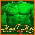 Bad Boy: Naughty at Night, Book 5 Audiobook by Jamie Lake Narrated by James Talbot