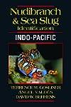 Nudbranch and Sea Slug Identification...