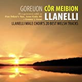 Goreuon Cor Meibion Llanelli / Best Of The Llanelli Male Voice Choir