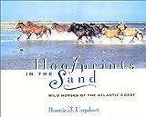 Hoofprints in the Sand: Wild Horses of the Atlantic Coast
