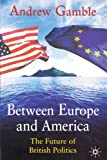 Between Europe and America: The Future of British Politics (0333555716) by Gamble, Andrew