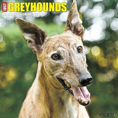 just-greyhounds-2017-wall-calendar-dog-breed-calendars