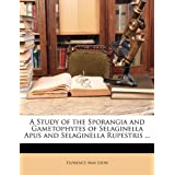 A Study of the Sporangia and Gametophytes of Selaginella Apus and Selaginella Rupestris ...