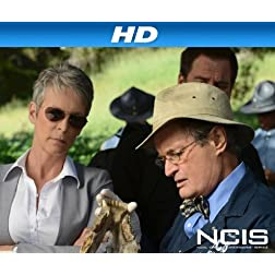 NCIS, Season 9 [HD]