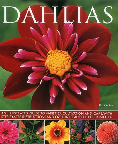 Dahlias: An Illustrated Guide To Varieties, Cultivation And Care, With Step-By-Step Instructions And Over 160 Beautiful Photographs PDF
