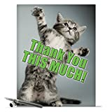 J3612 Jumbo Funny Thank You Card: This Much Kitten With Envelope (Extra Large Version: 8.5'' x 11'')