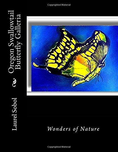 oregon-swallowtail-butterfly-galleria-field-stream