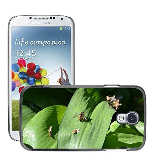 Just Phone Cases Carcasa Funda Prima Delgada SLIM Casa Case Bandera Cover Shell para // M00129145 Hover Fly Leaf Wild Garlic Close-up // Samsung Galaxy S4 S IV SIV i9500