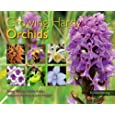 Growing Hardy Orchids (Kew Growing)
