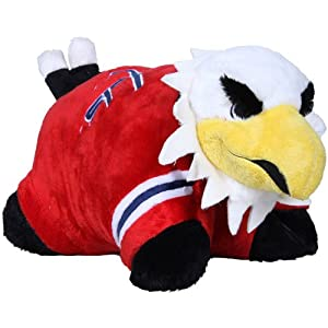 NHLTeam Pillow Pets
