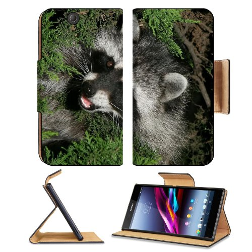 Raccoon Top View Green Grass Sony Xperia Z Ultra Flip Case Stand Magnetic Cover Open Ports Customized Made To Order Support Ready Premium Deluxe Pu Leather 7 1/4 Inch (185Mm) X 3 15/16 Inch (100Mm) X 9/16 Inch (14Mm) Liil Sony Xperia Z Ultra Cover Profess front-928707